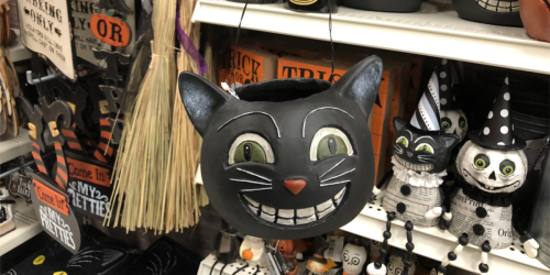 Over 60% Off Halloween Decor at Michaels