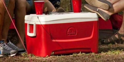 Igloo Island Breeze 48-Quart Coolers Only $14.98 at Dick's Sporting Goods