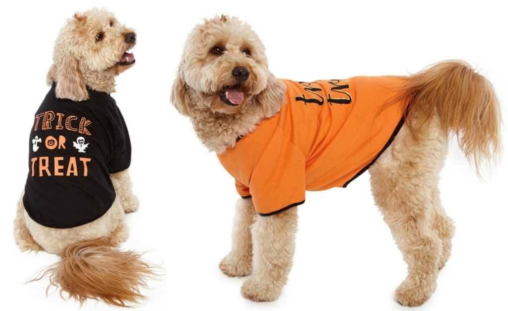 Pet Costume Shirts at JCPenney