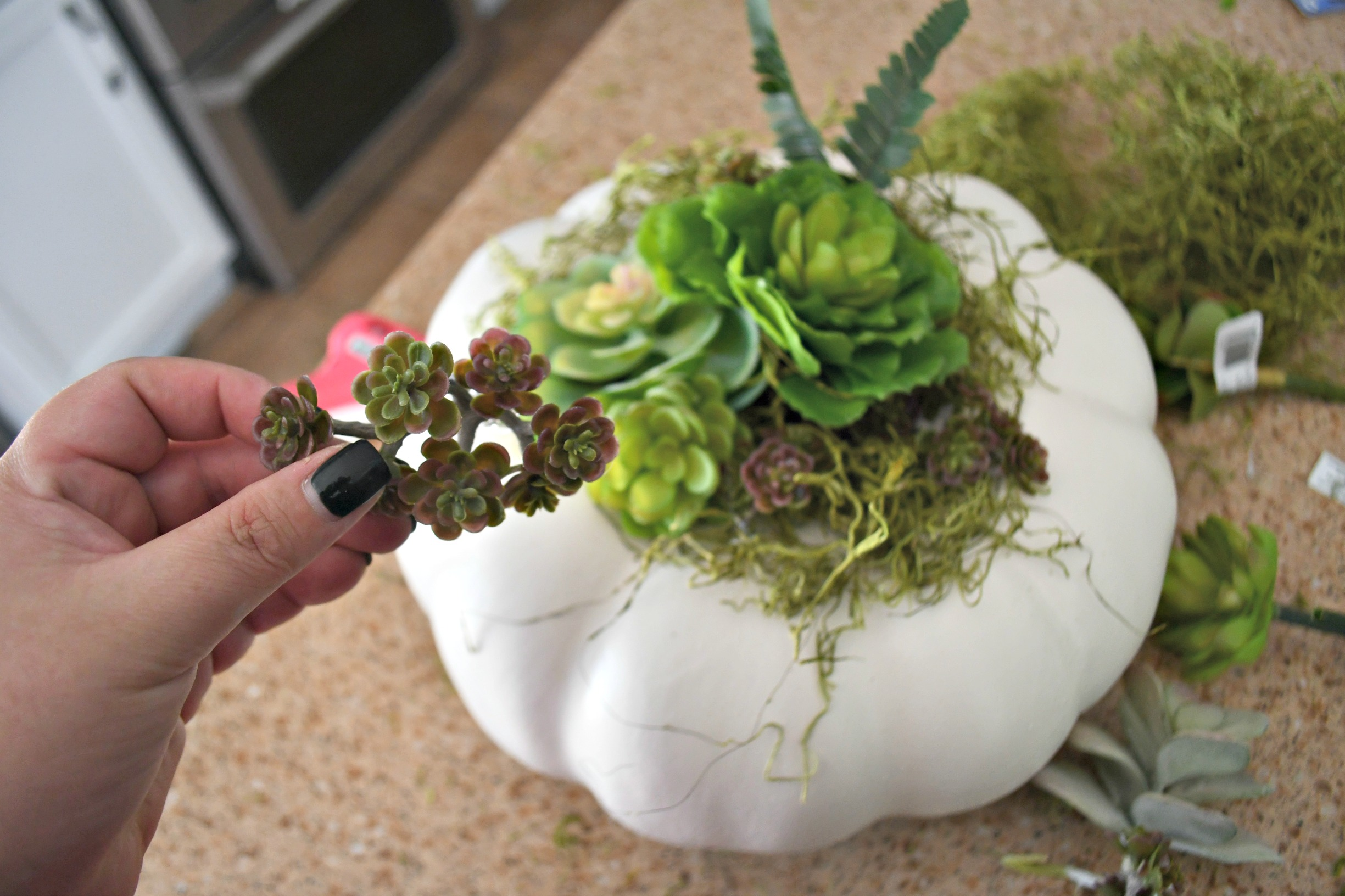 style your fall table with this DIY succulent centerpiece idea - here, tucking in more succulents