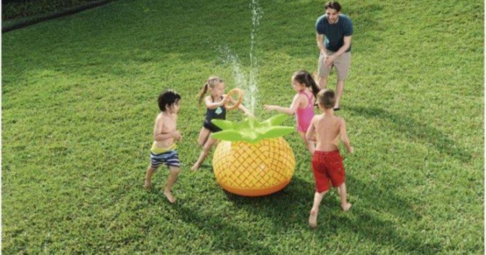 Buy 1 Get 2 Free Summer Items at DollarGeneral.com (Save on Water Toys, Pools & More)