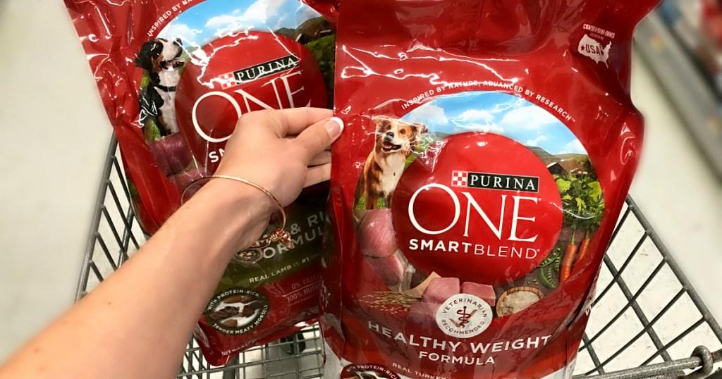 Purina ONE Smartblend Dog food at Walmart