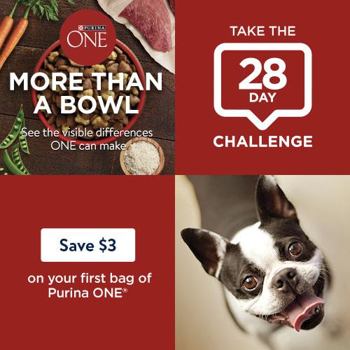5 Off Purina One Smartblend Dry Dog Food At Walmart Hip2save