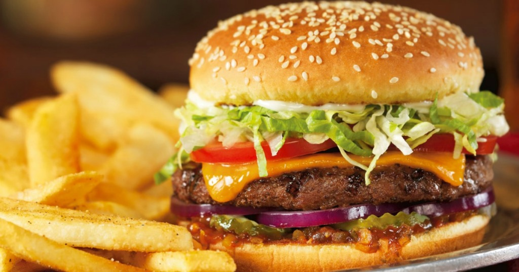 Red Robin Burger and Bottomless Fries