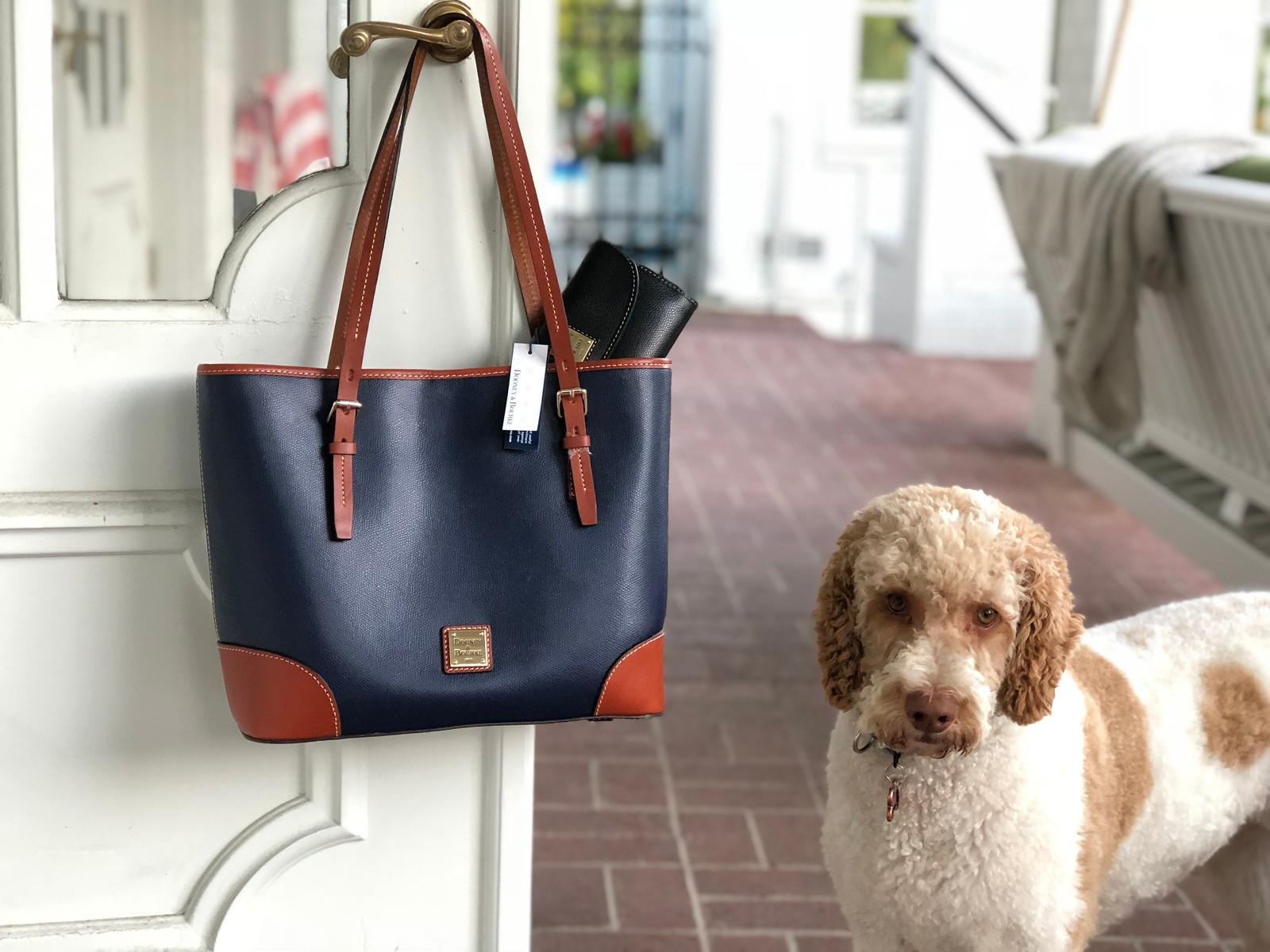 Giveaway Dooney & Bourke tote and clutch – clutch and bag hanging from a doorknob