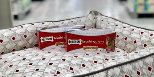 Milk-Bone Brushing Chews Dog Treats Only $1.62 Each After Cash Back at Target