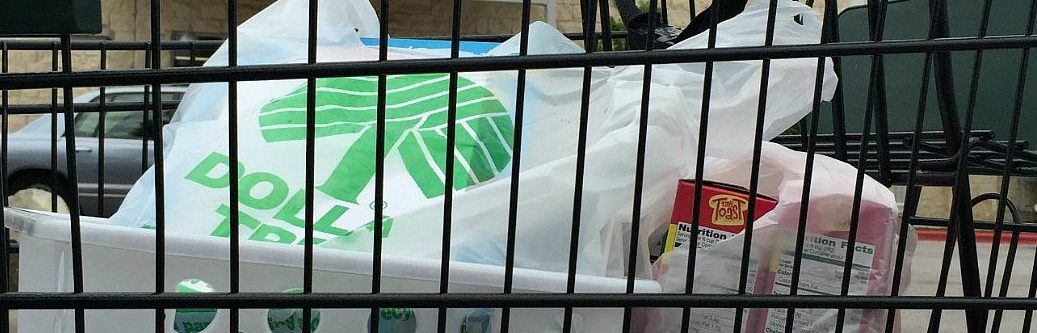 dollar tree shopping cart with bags