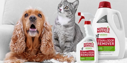 Up to 45% Off Nature's Miracle Pet Odor & Stain Remover Products on Amazon
