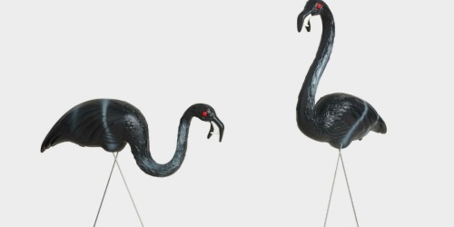 Two Black Zombie Flamingos Lawn Ornaments as Low as $15.99