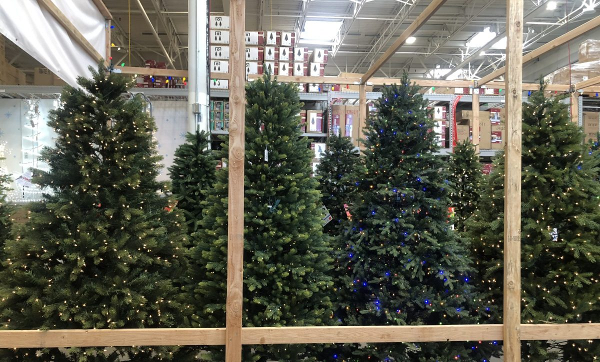 25% Off Fresh Christmas Trees at Lowe's - Hip2Save