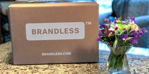 Brandless Offers Everyday Essentials for ONLY $3 Each