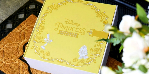 Disney Princess Subscription Boxes Are Now Available