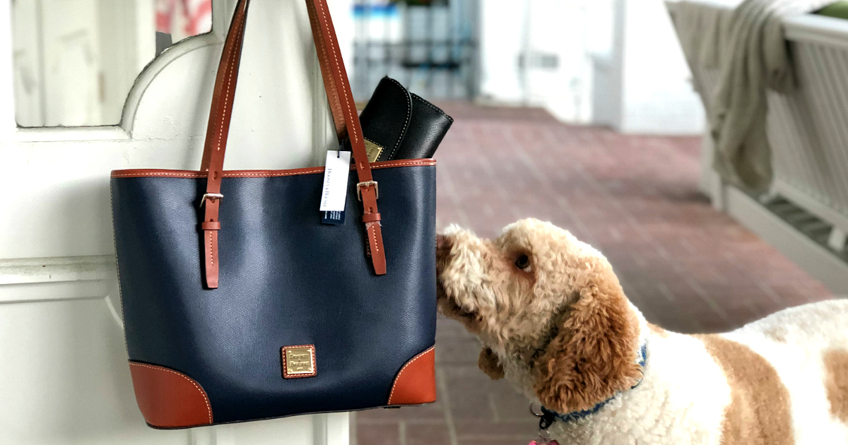last chance win dooney bourke