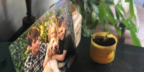 Metal Photo Panel ONLY $14 w/ FREE Walgreens Store Pickup (Regularly $40) + More