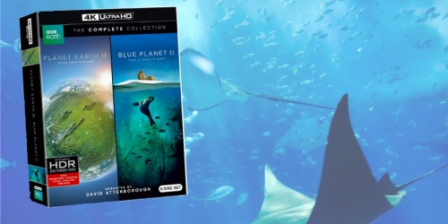 Planet Earth II AND Blue Planet II 4K UltraHD Blu-ray Combo Collection Only $34.99 Shipped