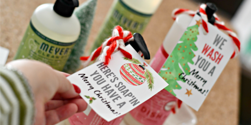 DIY Hostess Gift (Holiday Soaps with Free Printable Tags)