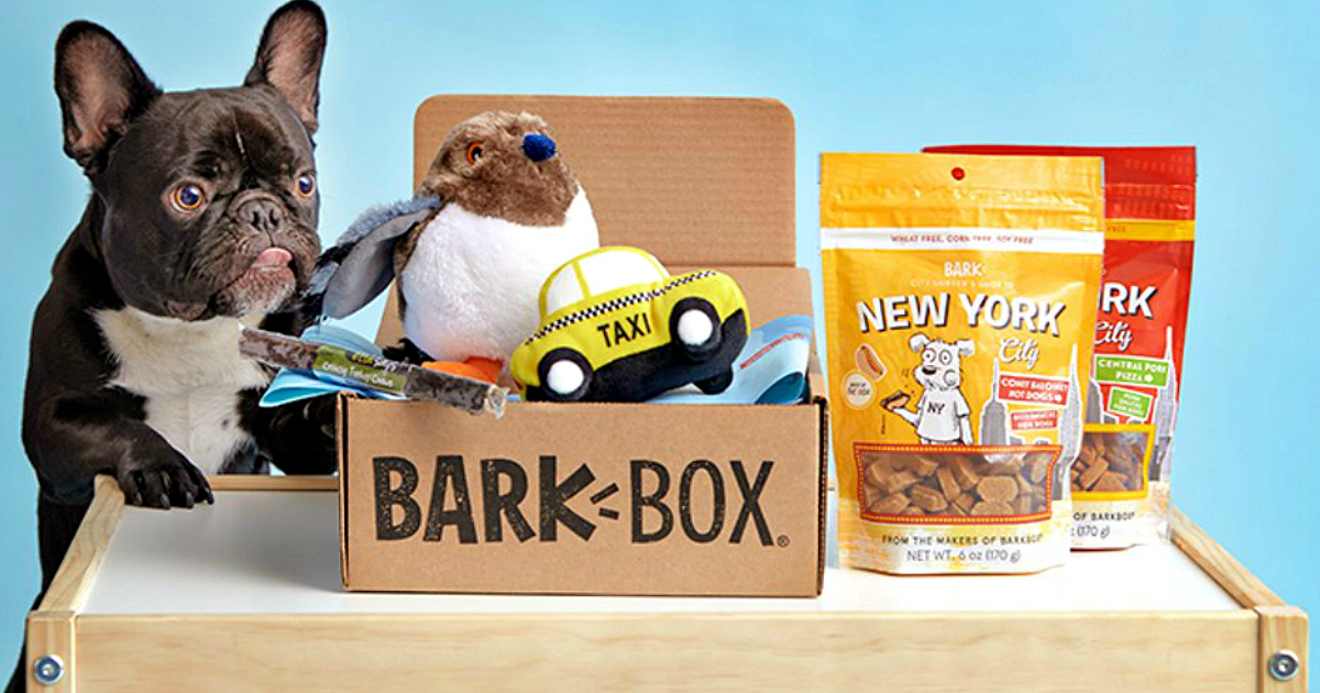 barkbox subscription deal – dog with open barkbox toys and snacks