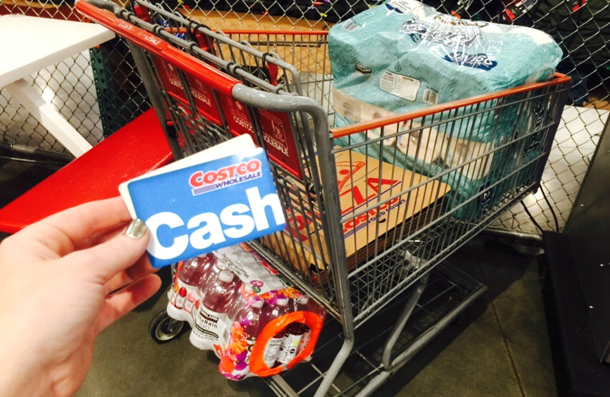 picture relating to Costco One Day Pass Printable identified as 8 Methods in direction of Retail store at Costco Sams Club Without having a Subscription