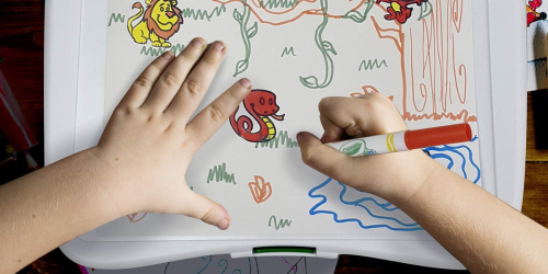 Amazon: Crayola Color Wonder Mess-Free Art Desk Only $9.59 Shipped (Regularly $29)
