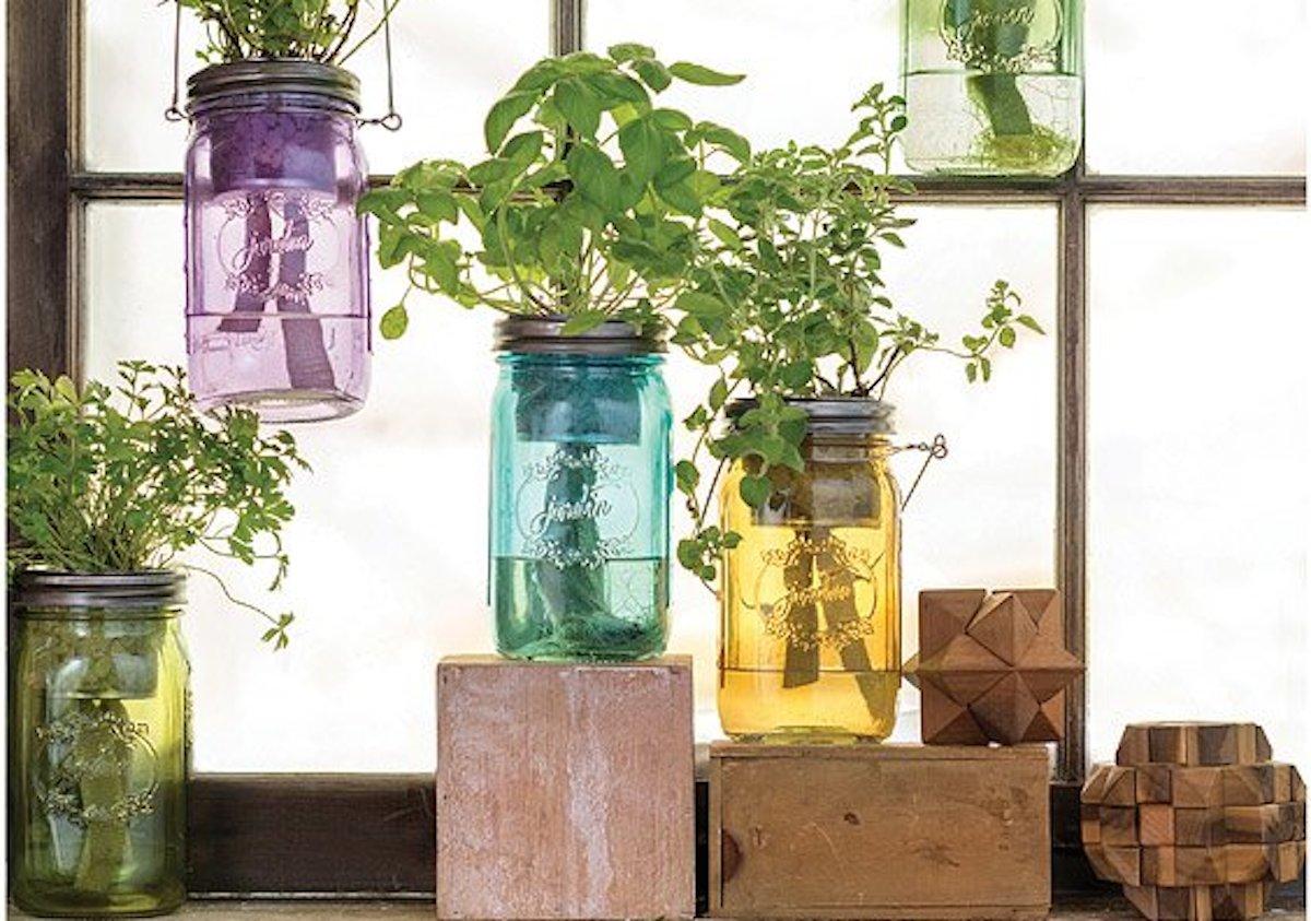 ultimate gift guide ideas under 25 — Mason Jar Indoor Herb Garden