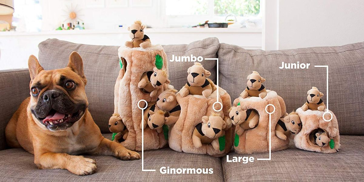 dog sitting on couch by toys