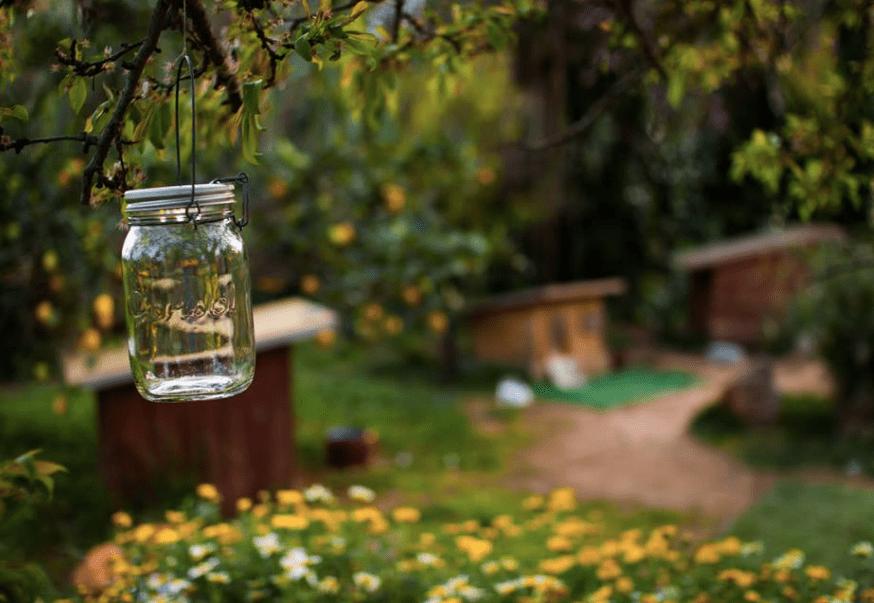 Amazon Sonnenglas Premium Solar Led Mason Jar Lantern Only 2449