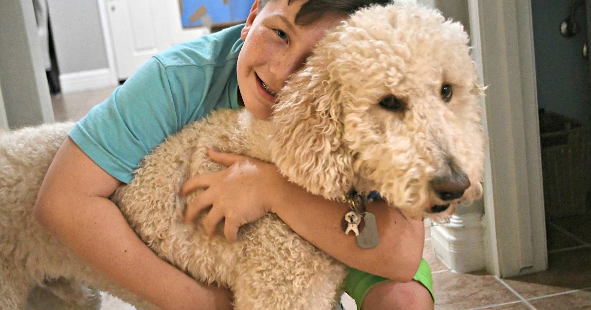 boy hugging a pet dog