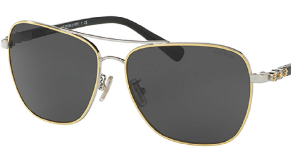 488d2caf34 low price coach hc8116 sunglasses 65217 56f30  official store hop on over  to eyedictive where you can score these coach gold tone black