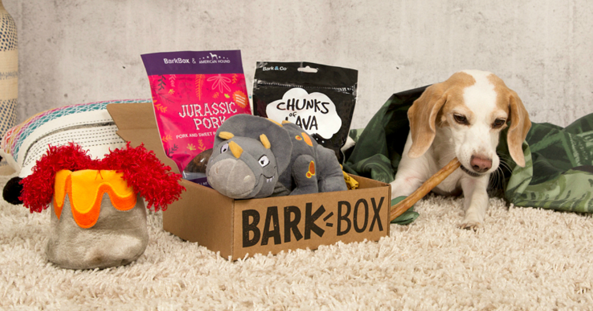 BarkBox Flash Sale – puppy playing with a chew