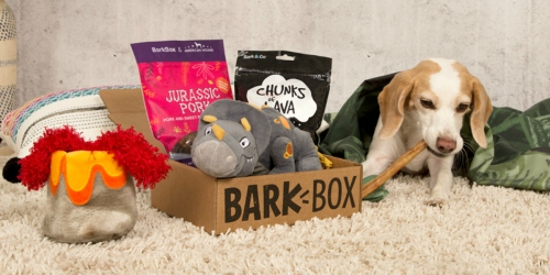 BarkBox Flash Sale: Get Your First Box for ONLY $15 Shipped