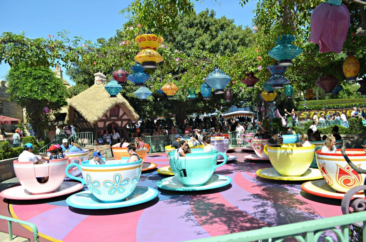 tea cup ride at the park