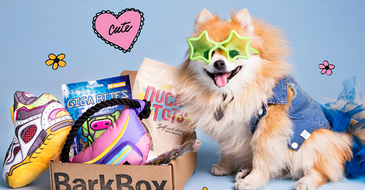 Dog wearing star-shaped glasses sitting next to a Retro bark box