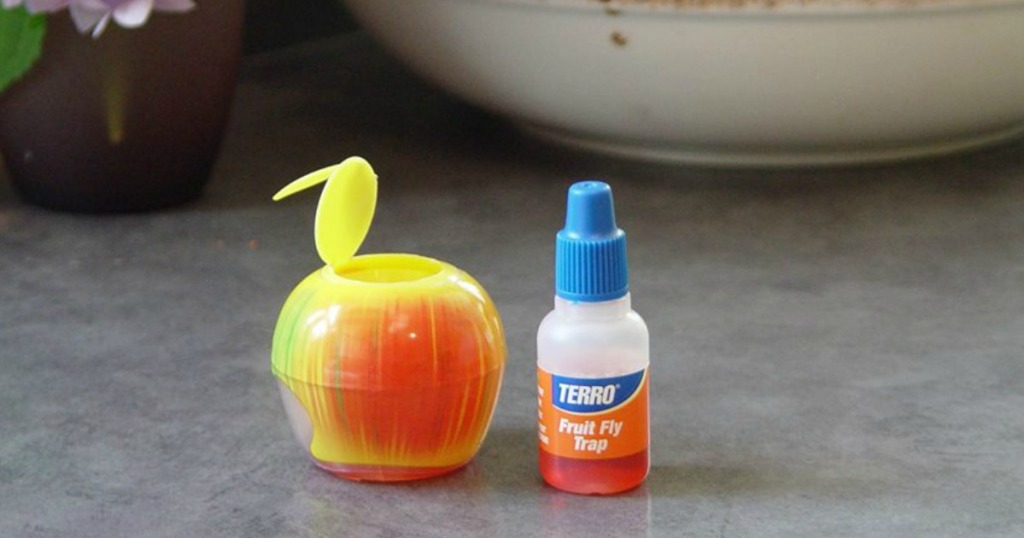 Terro Fruit Fly Trap 6-Pack Only $5.88 (Regularly $17 ...