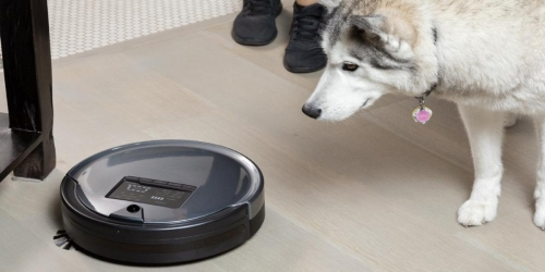 bObsweep PetHair Plus Robotic Vacuum Cleaner And Mop Only $209.99 Shipped (Regularly $400) + More