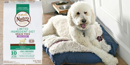 Amazon: Nutro Adult Dog Food BIG 22LB Bag Just $43 Shipped (Regularly $58) + More