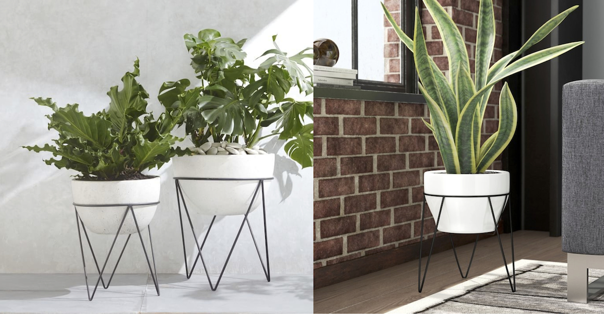 west elm copycat for less money  standing mid century modern planters comparisons side by side