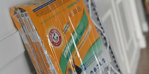 Arm & Hammer 12-Count Air Filter Packs Only $54.45 Shipped (Just $4.54 Each)