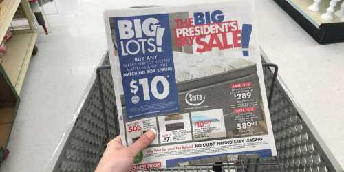 Big Lots President's Day Sale Starts NOW (Big Savings In-Store & Online)