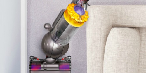Dyson Ball Multi Floor + Upright Vacuum Only $159.99 Shipped (Regularly $400)