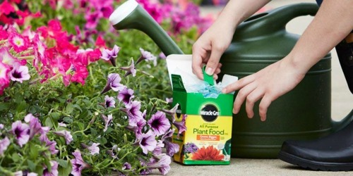 Amazon: Miracle-Gro Plant Food Box Only $3