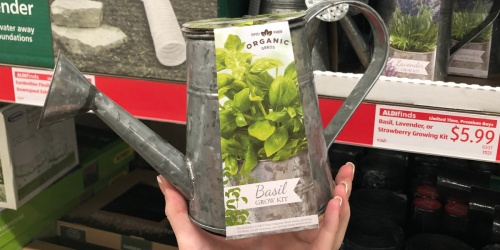 Organic Growing Kits Only $5.99 at ALDI + More Spring Gardening Finds