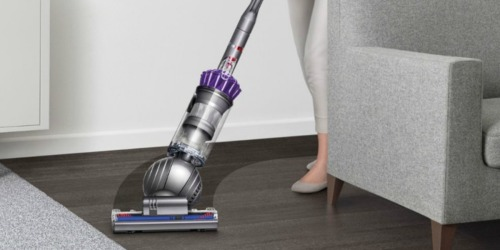 Dyson Slim Ball Animal Vacuum Only $199.99 Shipped (Regularly $350)