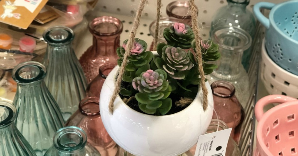 hanging succulent with vases and other items at Target