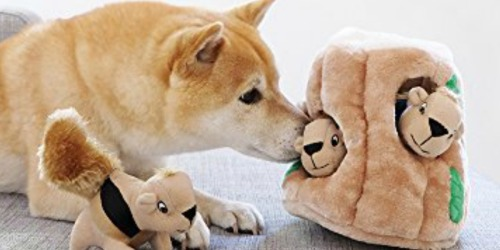 Outward Hound Hide-A-Squirrel Dog Toy Only $6 at Amazon + More
