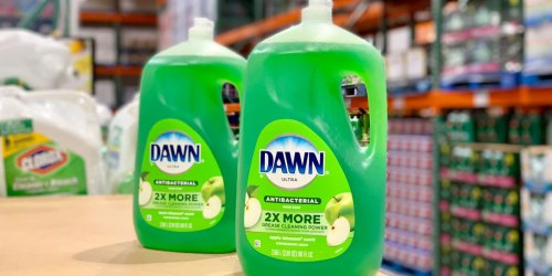 HUGE Dawn Anti-Bacterial Apple Blossom Dish Soap Only $6.79 at Costco