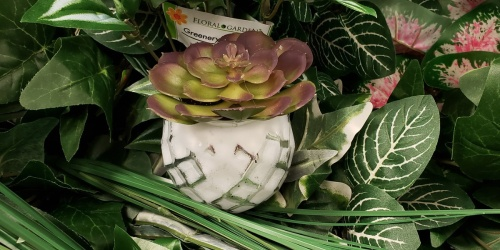 Colorful Faux Succulents Only $1 at Dollar Tree