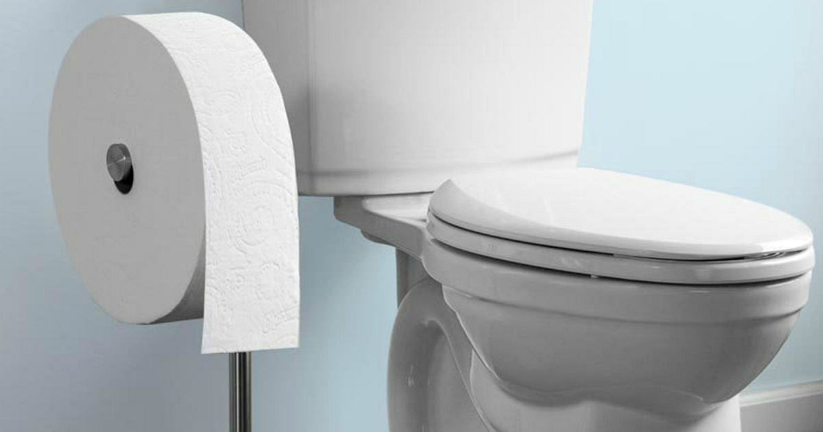 Charmin forever roll toilet paper next to a toilet