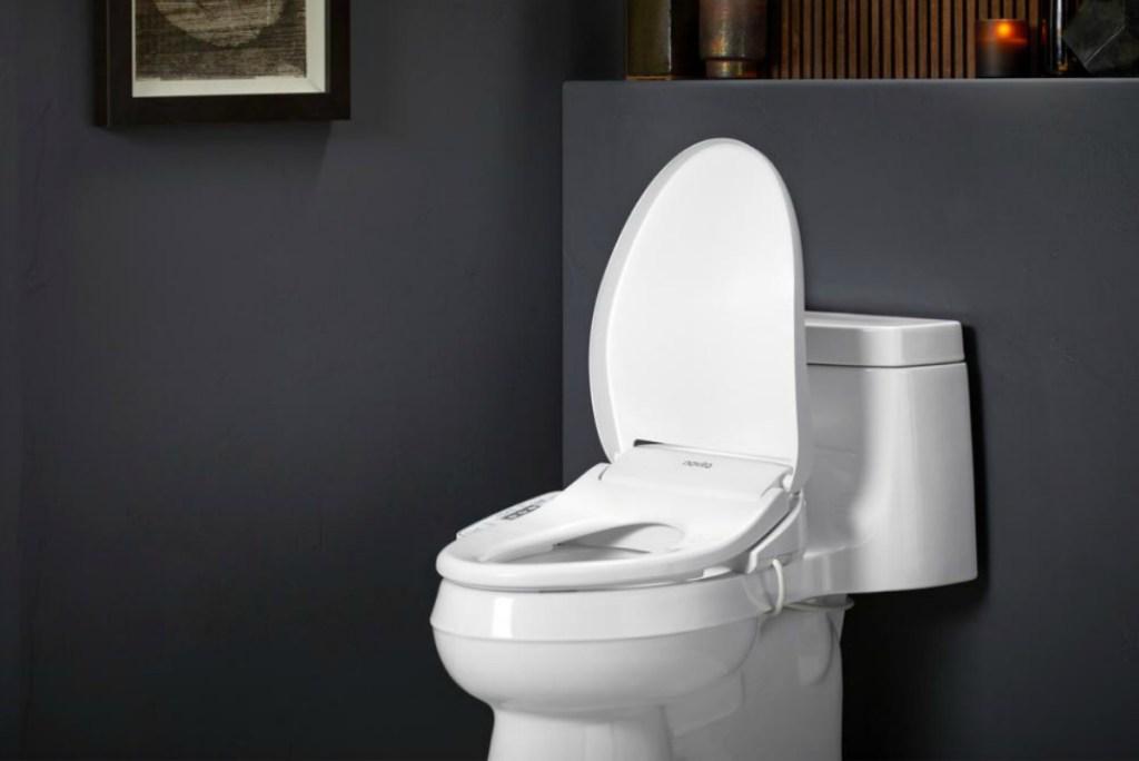 Elongated bidet on a matching toilet