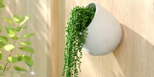 Outdoor Achilles Ceramic Wall Planters Only $6.99 Shipped (Regularly $29) + More Planter Deals