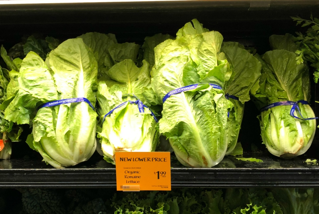 Romaine lettuce at Whole Foods